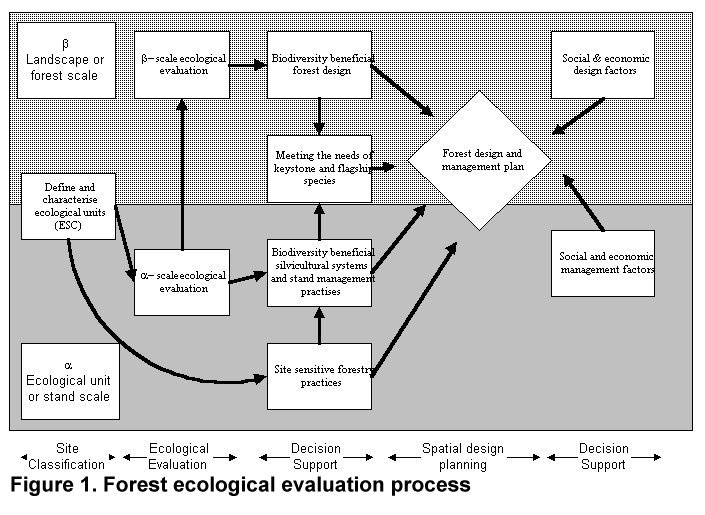 evaluate the importance of ecosystem management A new framework to evaluate ecosystem central importance in sustaining the dates will be a great reference to ecosystem restoration and management.